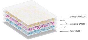 Zink Technology Paper Layers