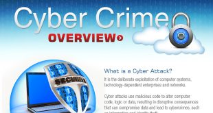 Cyber Crime Overview 310x165 - Cyber Crime Infographic