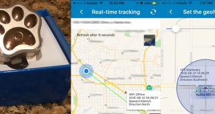 pawtracker 310x165 - Find your lost pet and more with this effective pet tracker and GPS