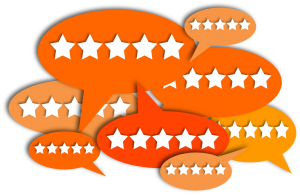manyreviews1 300x195 - Finding an SEO Agency in Montreal