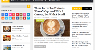newsonline 310x165 - Best WordPress Blog Themes
