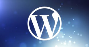 wordpress 310x165 - How to Ensure That Your WordPress Website is Prepared to Face the Future