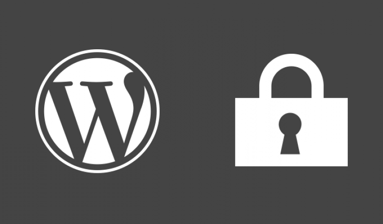 wordpress-security-plugins-31vrfq9mcc22h7u3b4b28a[1]