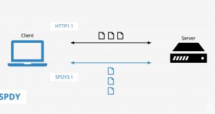 SPDY Protocol1 310x165 - ERR_SPDY_PROTOCOL_ERROR error in Google Chrome