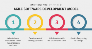 what is agile software dev model1 310x165 - Understanding Important Characteristics of Agile SD