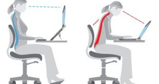 1f2adef9c95815d8acd8a2dd6b0567df1 310x165 - How to Correct Posture with Good Desk Ergonomics