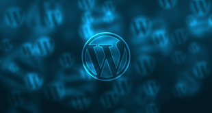 wordpressimage 310x165 - These Are the Eight WordPress Tools You Can't Go Without
