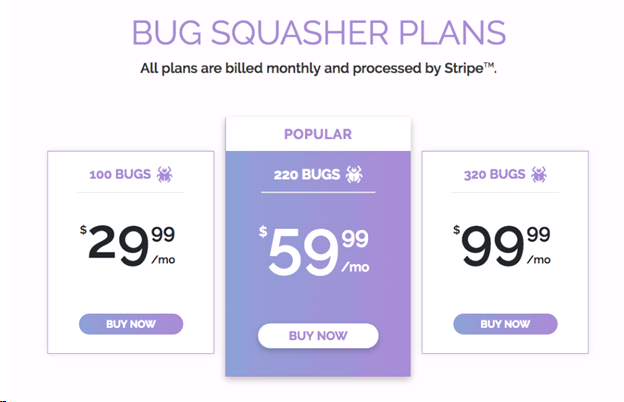 BUGSQUASHER - The Bug Squasher Review: Features and Pricing
