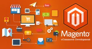 Magento2 310x165 - The Best Ways to Consider WooCommerce to Magento Migration