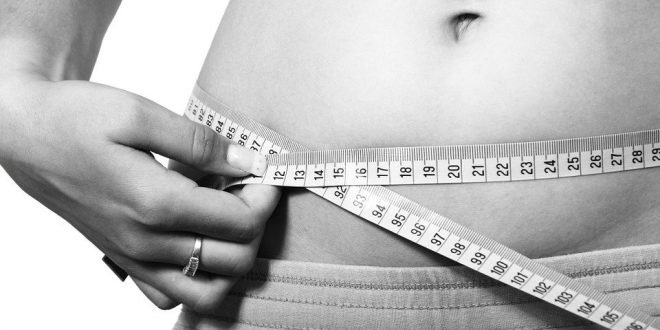 Top 6 Weight Loss Apps for 2020 – Information Technology Blog