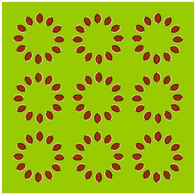 2012891513 34b81d6989 o - Optical Illusions